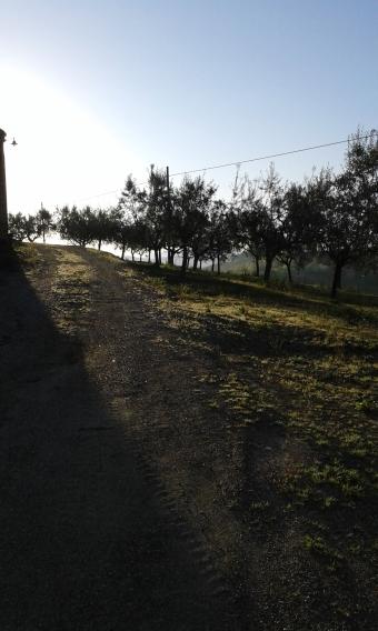 Abruzzo_20160411_072827