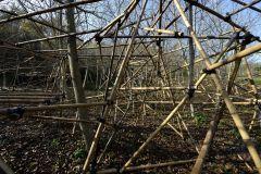 No Man's Land, bambù - Loreto Aprutino (PE) - ph. Gino Di Paolo - www.fondazionearia.it
