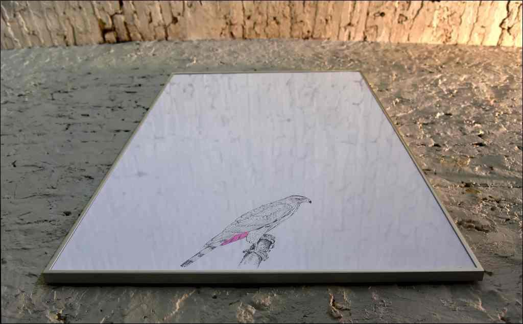 Valentina Colella, ... e dopo accadde il bianco, 2016, attesa, disegno su carta, 100 x 70 cm