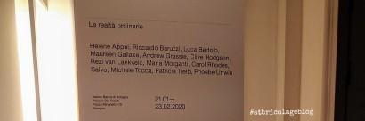 Le realtà ordinarie a cura di Davide Ferri, Palazzo De' Toschi - Salone della Banca di Bologna (BO) - ph. Amalia Temperini