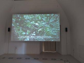 Allora & Calzadilla, The Great Silence (Frame da video) 2016,- Museo MAXXI L'Aquila - ph. Amalia Temperini